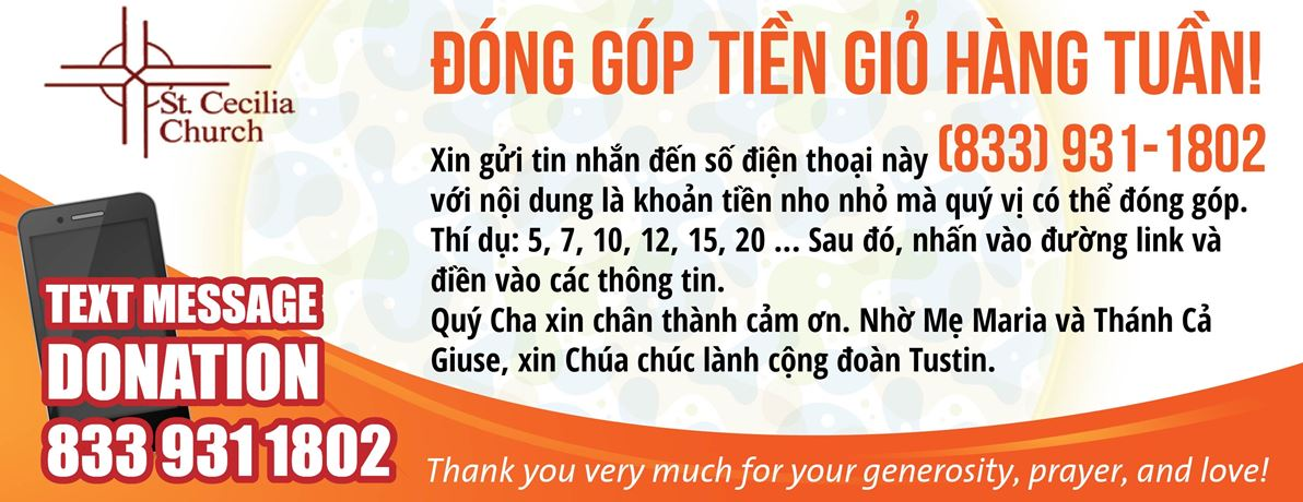 Donate by Text – Vietnamese